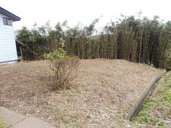 能代市の竹やぶの伐採