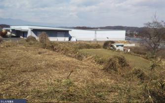 さくら市の工場の草刈り