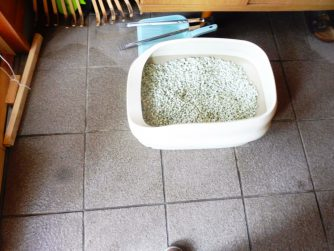 能代市の猫のトイレ掃除